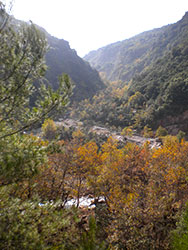 Neda Valley